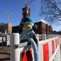 Affe vor dem Roten Rathaus