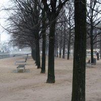 Winter in Berlin-Mitte