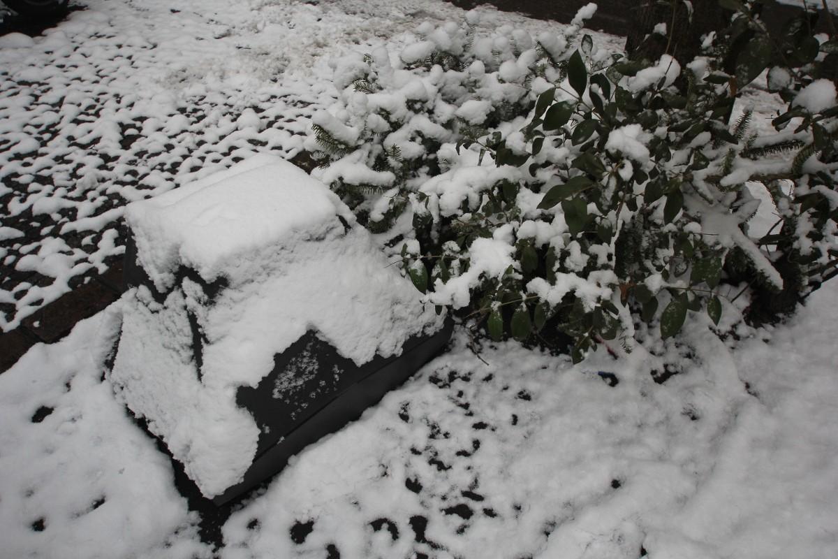 Berliner Schnee mit Müll