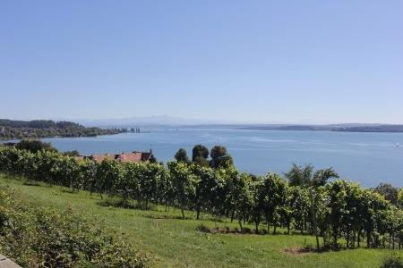 Bodensee-Panorama