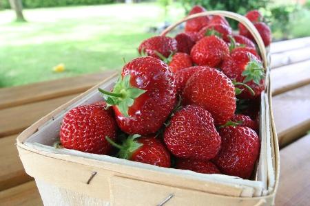 foto erdbeeren erdbeeren und nochmals erdbeeren insgesamt 2 50 kilogramm detlef henke. Black Bedroom Furniture Sets. Home Design Ideas