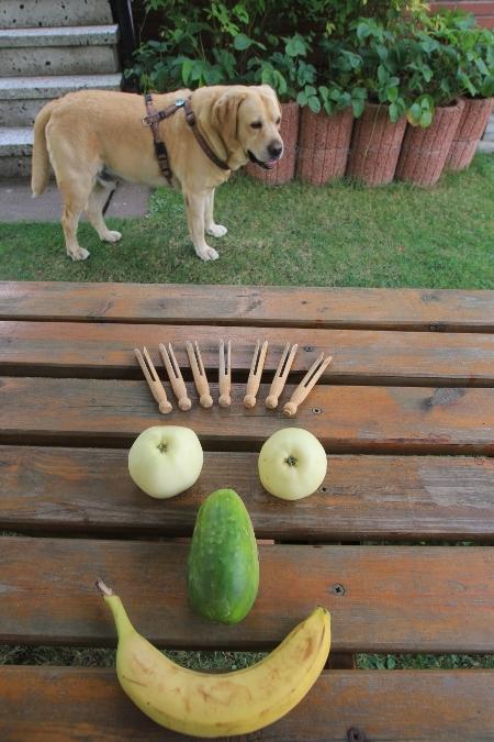 Gesicht mit Hund im Hintergrund