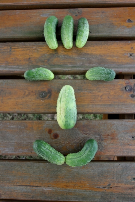 Das Gurkengesicht