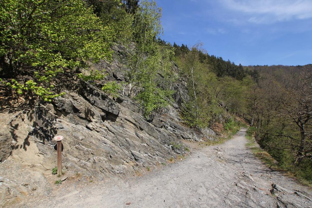 harz-wanderung-steiniger-weg