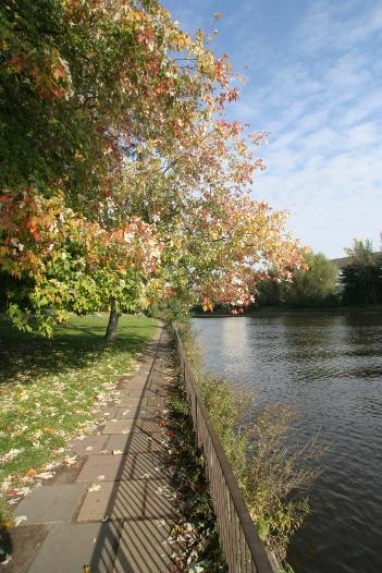 Das Foto zeigt die Farben im Herbst 2010