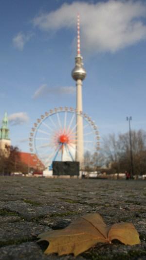 Herstliche Tage in Berlin. Ein Blatt vor dem Berliner Fernsehturm