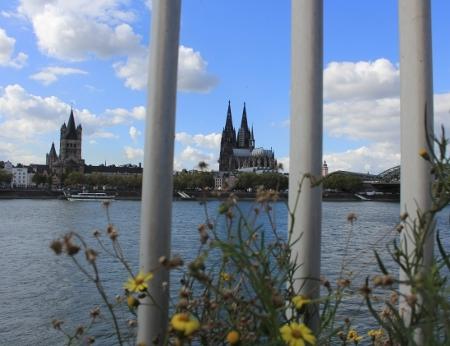 Kölner Dom und Rhein