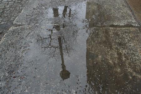 Berliner Wasserspiegel vor der Tür - Der Welttag des Wassers rückt näher...