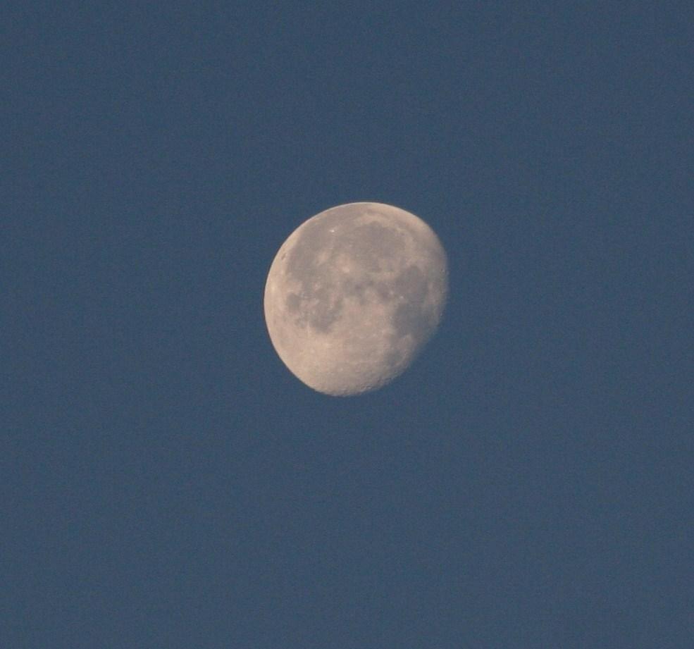Foto: Mond - Berlin - Dezember 2009