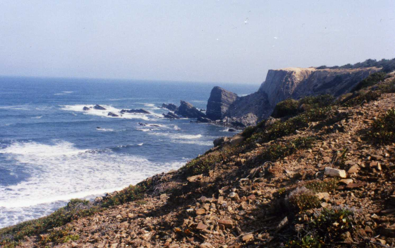 Die Westküste