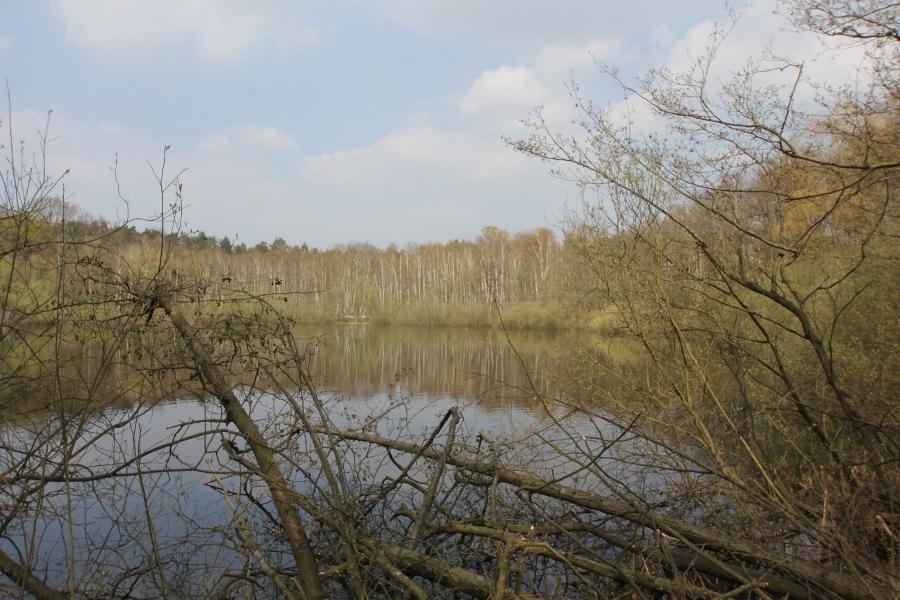 Teuefelsee in Köpenick
