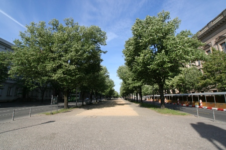 Unter den Linden 
