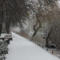 Schneefall am Berliner Kanal