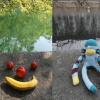 Affen oder Obstgesicht - was ist schönes?